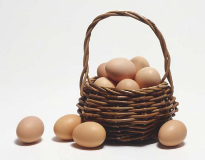 eggsforholly